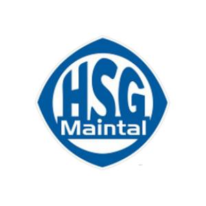 Maintal Handball